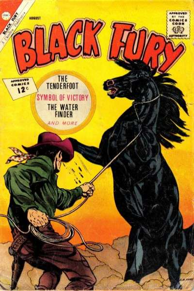 Black Fury #37 comic books for sale