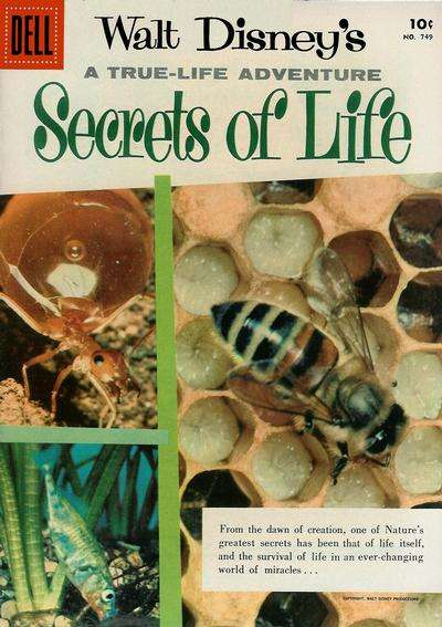 Secrets of Life #1 comic books for sale