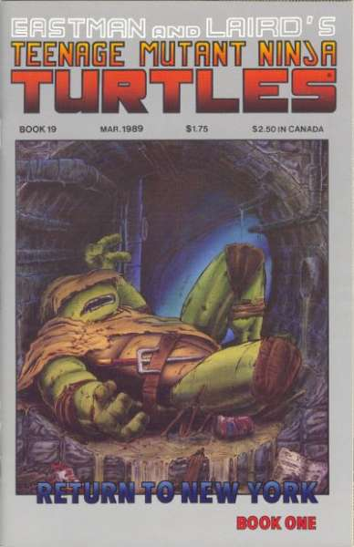 Teenage Mutant Ninja Turtles #19 comic books for sale