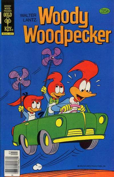 Woody Woodpecker #166 comic books for sale