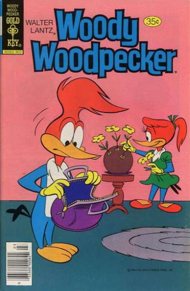 Woody Woodpecker #176 comic books for sale