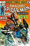 Amazing Spider-Man #171 comic books - cover scans photos Amazing Spider-Man #171 comic books - covers, picture gallery
