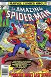 Amazing Spider-Man #173 comic books - cover scans photos Amazing Spider-Man #173 comic books - covers, picture gallery
