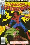 Amazing Spider-Man #176 comic books - cover scans photos Amazing Spider-Man #176 comic books - covers, picture gallery