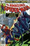 Amazing Spider-Man #191 comic books - cover scans photos Amazing Spider-Man #191 comic books - covers, picture gallery