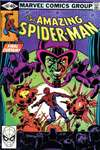 Amazing Spider-Man #207 comic books - cover scans photos Amazing Spider-Man #207 comic books - covers, picture gallery