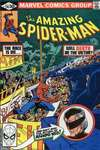 Amazing Spider-Man #216 comic books - cover scans photos Amazing Spider-Man #216 comic books - covers, picture gallery