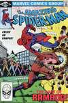 Amazing Spider-Man #221 comic books - cover scans photos Amazing Spider-Man #221 comic books - covers, picture gallery