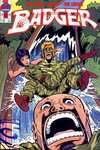 Badger #48 comic books - cover scans photos Badger #48 comic books - covers, picture gallery