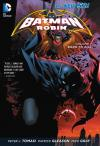 Batman and Robin: Born to Kill - Hardcover #1 comic books for sale