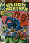 Black Panther #14 comic books for sale
