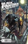 Black Panther: The Man Without Fear comic books