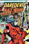 Daredevil #104 Comic Books - Covers, Scans, Photos  in Daredevil Comic Books - Covers, Scans, Gallery