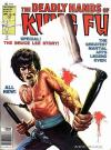 Deadly Hands of Kung Fu #28 comic books for sale