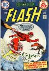 Flash #228 cheap bargain discounted comic books Flash #228 comic books