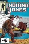 Further Adventures of Indiana Jones #22 comic books - cover scans photos Further Adventures of Indiana Jones #22 comic books - covers, picture gallery
