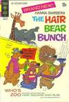 Hair Bear Bunch comic books