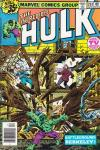 Incredible Hulk #234 comic books for sale