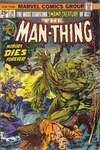 Man-Thing #10 comic books - cover scans photos Man-Thing #10 comic books - covers, picture gallery