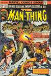 Man-Thing #11 comic books - cover scans photos Man-Thing #11 comic books - covers, picture gallery