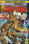 Man-Thing #13 comic books - cover scans photos Man-Thing #13 comic books - covers, picture gallery