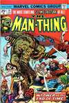 Man-Thing #14 comic books - cover scans photos Man-Thing #14 comic books - covers, picture gallery