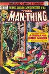 Man-Thing #15 comic books - cover scans photos Man-Thing #15 comic books - covers, picture gallery