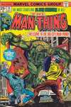 Man-Thing #19 comic books - cover scans photos Man-Thing #19 comic books - covers, picture gallery