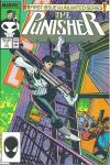 Punisher comic books