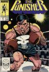 Punisher #21 comic books - cover scans photos Punisher #21 comic books - covers, picture gallery