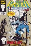 Punisher #67 comic books for sale