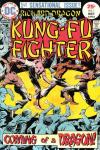 Richard Dragon: Kung-Fu Fighter comic books