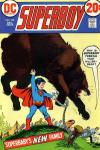 Superboy #192 Comic Books - Covers, Scans, Photos  in Superboy Comic Books - Covers, Scans, Gallery
