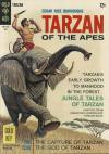 Tarzan #169 comic books - cover scans photos Tarzan #169 comic books - covers, picture gallery