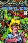 Teenage Mutant Ninja Turtles #12 comic books for sale