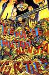 Teenage Mutant Ninja Turtles #34 comic books for sale