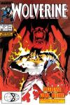 Wolverine #13 cheap bargain discounted comic books Wolverine #13 comic books