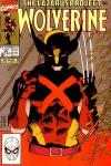 Wolverine #29 comic books - cover scans photos Wolverine #29 comic books - covers, picture gallery