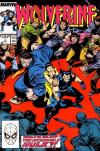 Wolverine #7 Comic Books - Covers, Scans, Photos  in Wolverine Comic Books - Covers, Scans, Gallery
